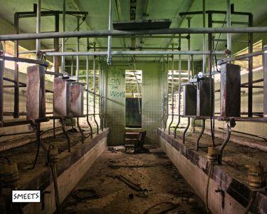 Dairyfarm-lrg-sml